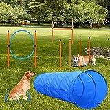 X XBEN Agility Ausrüstungs Set für Hunde, Hindernisse mit Hundetunnel,Geflochtene Stangen, Springring, Hürdenstange,...