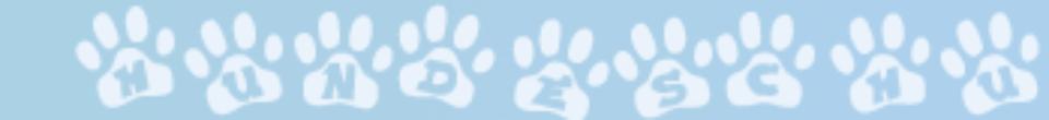 Hunde OP Versicherung schützt vor hohen Tierarztkosten