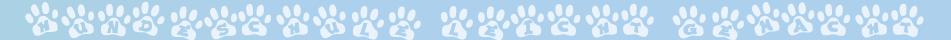 Tierheime Bayern - Heim für Tiere in der Nähe finden