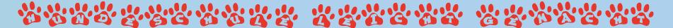 Erziehungshalsband für Hunde