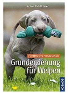 Hundespielzeug - Intelligenz von Welpen und Hunden spielerisch fördern