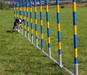 Gassen Slalom-Stangen für Hundetraining