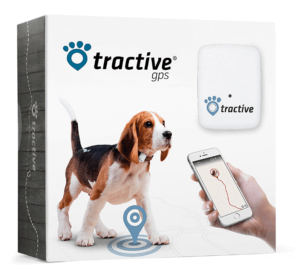 Hunde-GPS-Tracker Extratipp
