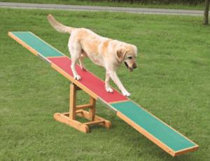 Hundewippe Trainingsgerät für Hunde