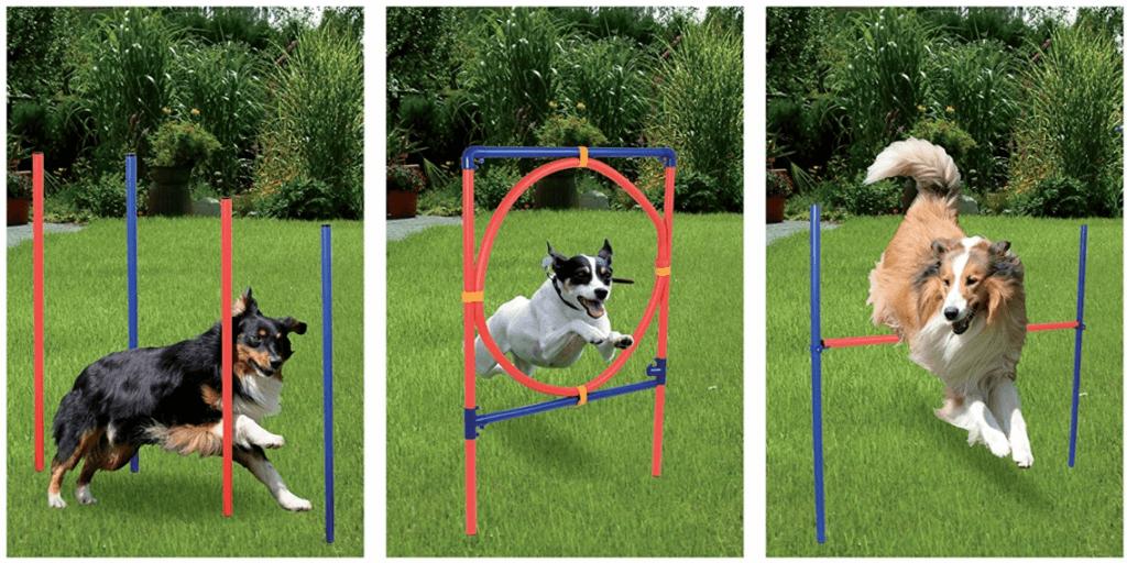 Trainingsgeräte für Hunde