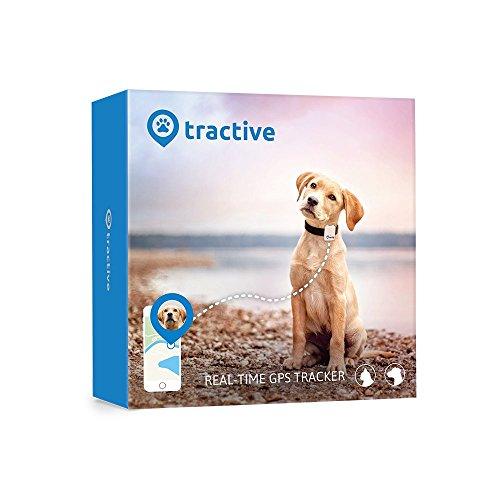 tractive GPS Peilsender für Hunde und Katzen